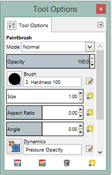 PaintbrushToolOptions