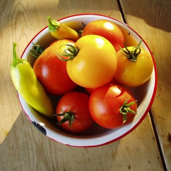 free-image-harvest-imcreator
