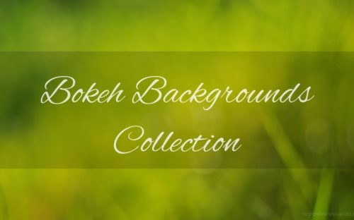 200+ Free Bokeh Background Images and Premium Collections
