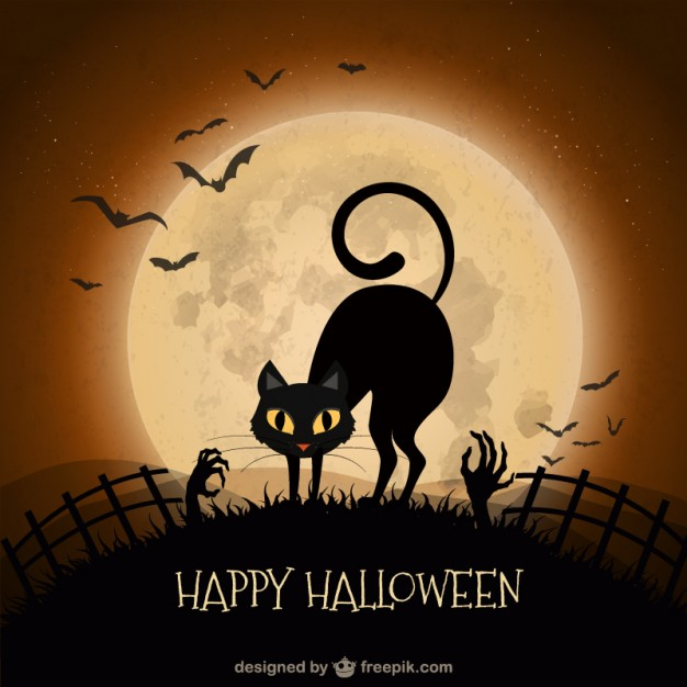 2-halloween-background-with-black-cat