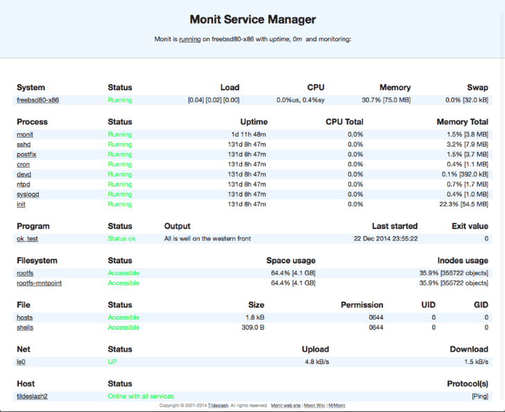 Monit Web Interface