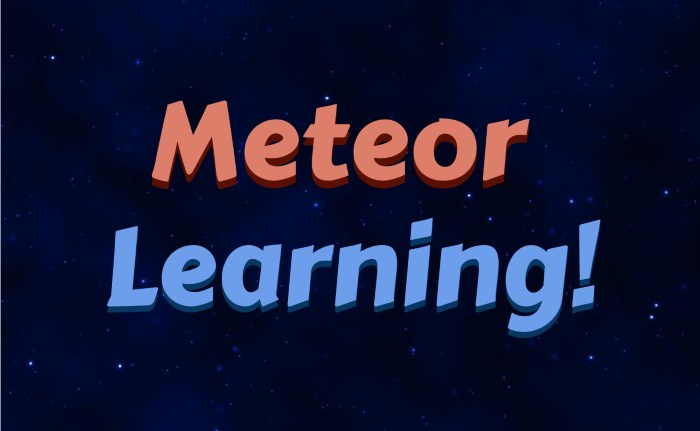 Learning Meteor