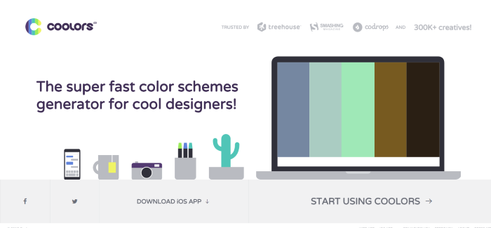 coolors color palettes generator
