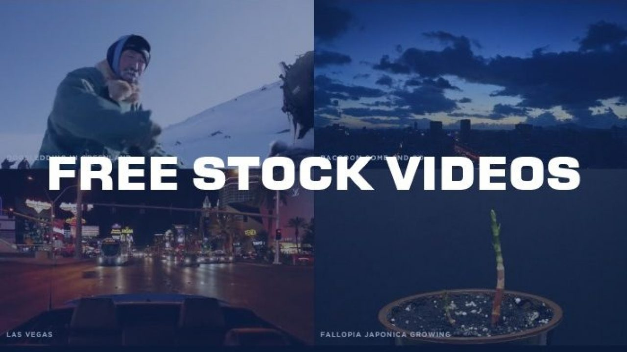 free stock video footage no watermark