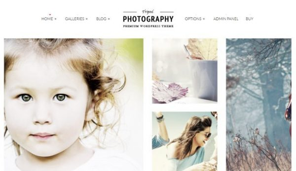 tripod-wordpress-theme