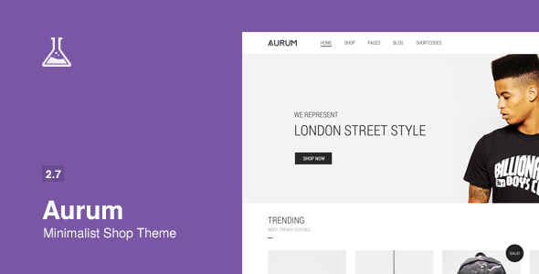 aurum-minimal-shopping-theme