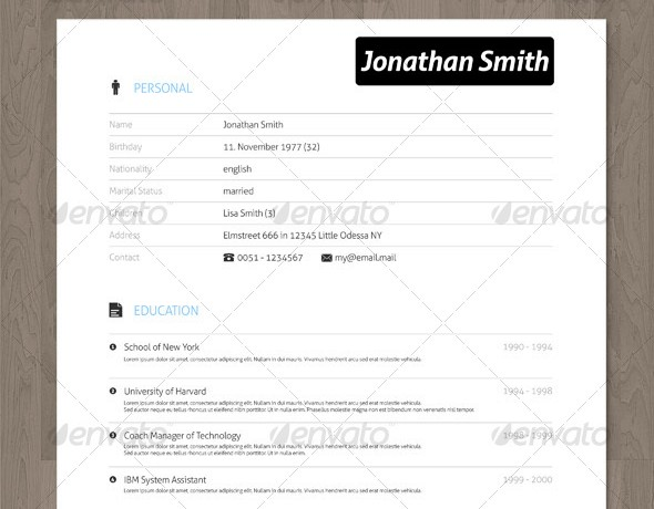 clean creative resume with vector icons. Resume Example. Resume CV Cover Letter