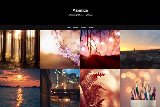 Maximize Tumblr themes for photographers