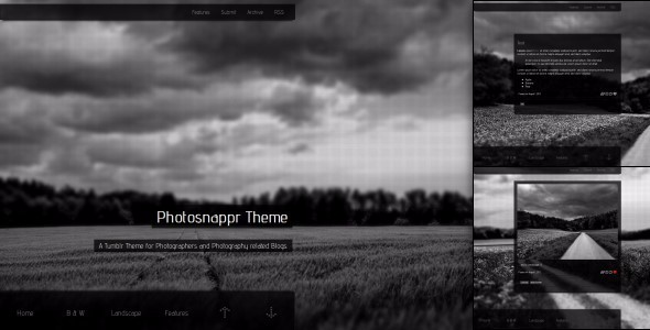 Photosnappr A Tumblr Theme For Photographer