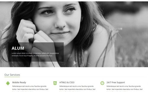 30+ Bootstrap WordPress Themes for Free Download & Paid Purchase