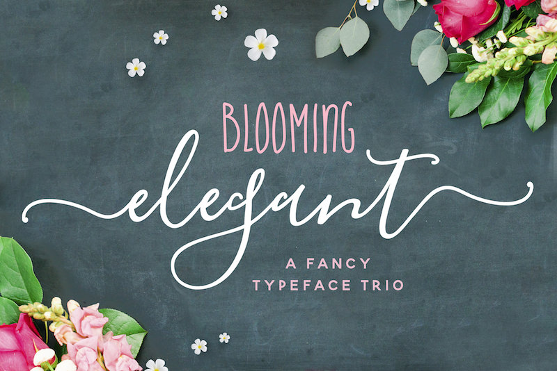 blooming-font-trio