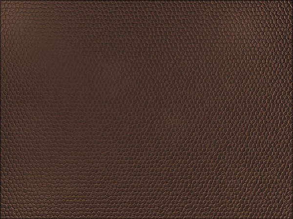 tutorial-photoshop-leather-texture