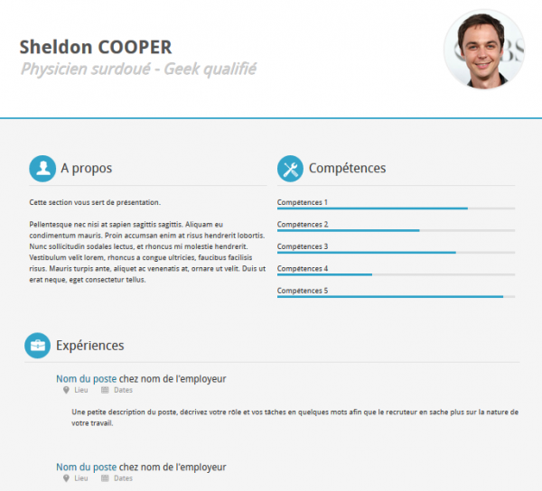 21 professional html css resume templates for free for Cv website template free