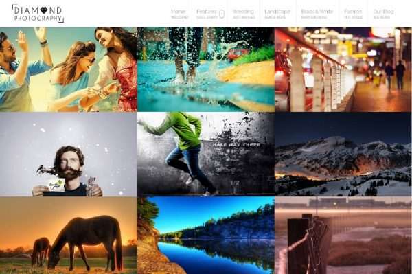 diamond-wp-photographer-theme