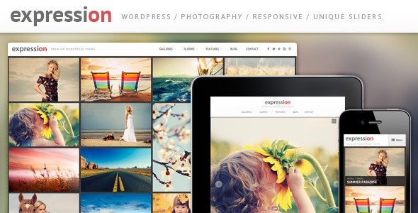 expression-wordpress-theme