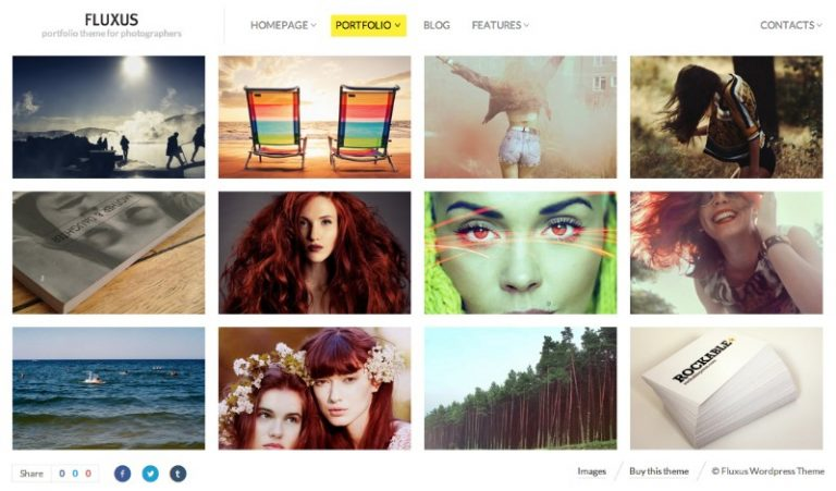 fluxus portfolio theme photographers