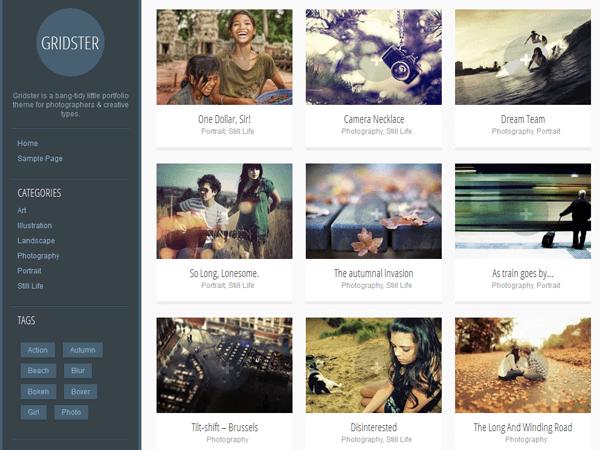 gridster wordpress photography theme