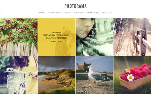 photorama-photography-wp-theme