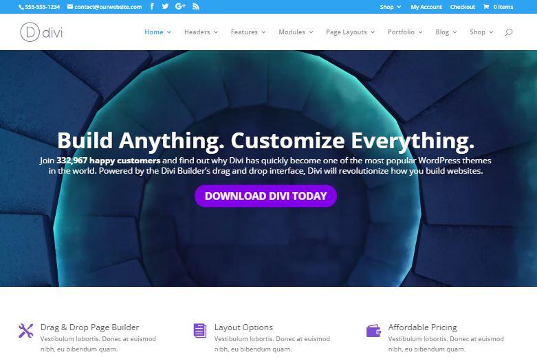 divi customizable wordpress themes