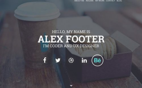16 Resume WordPress Themes for Personal Websites with CV
