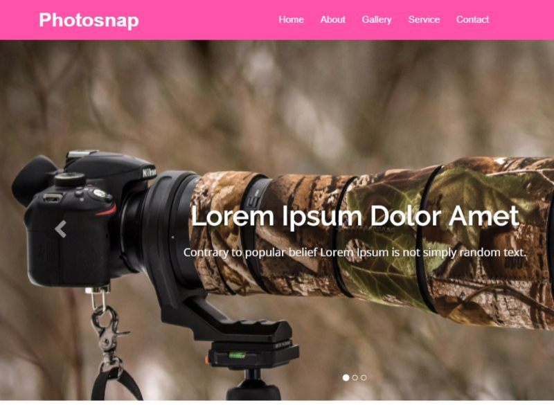 photosnap photo gallery template