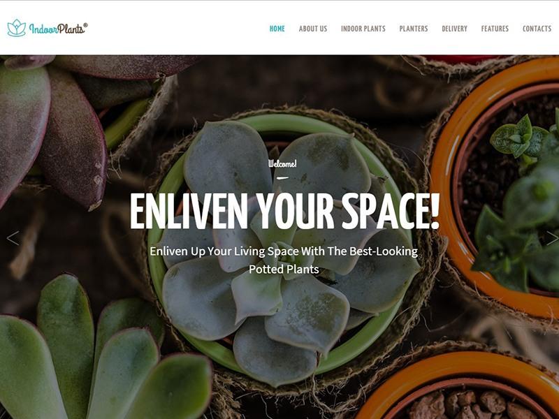 Indoor Plants   Gardening & Houseplants Theme