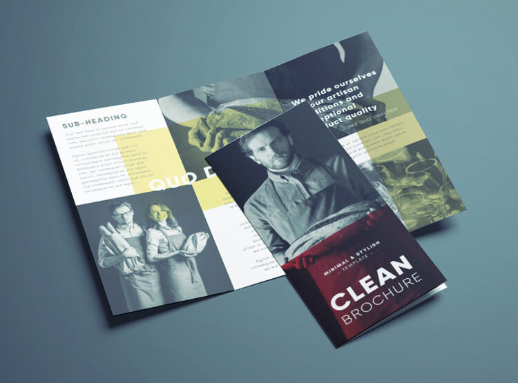 clean trifold brochure indesign template free