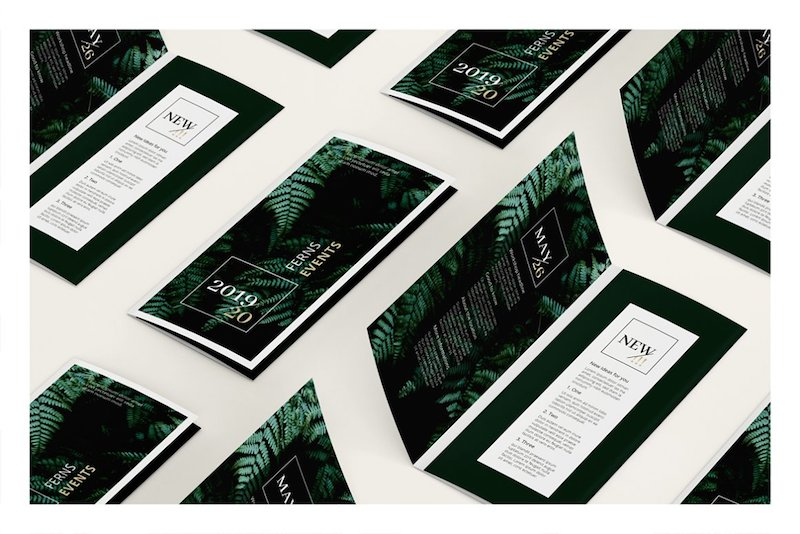 ferns trifold event brochure template