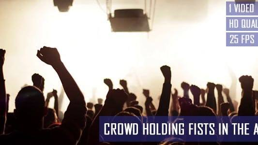 Party Crowd Holding Fists In The Air