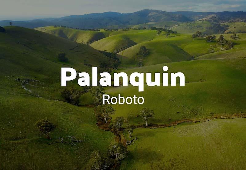 palanquin roboto font combination