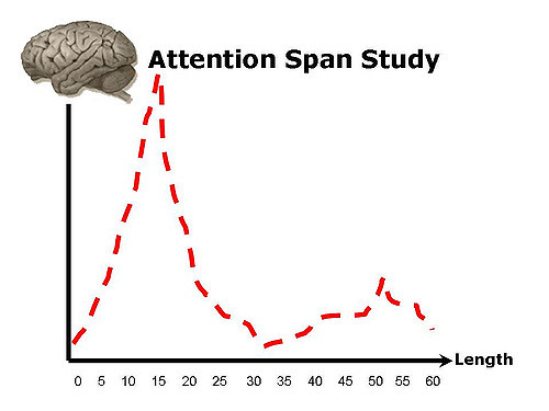 attention span study