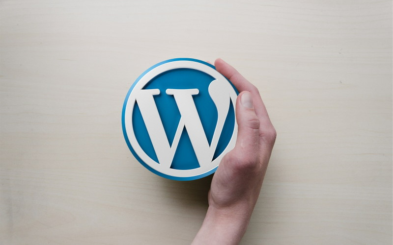 8 Do's and Dont's of Picking a WordPress Theme