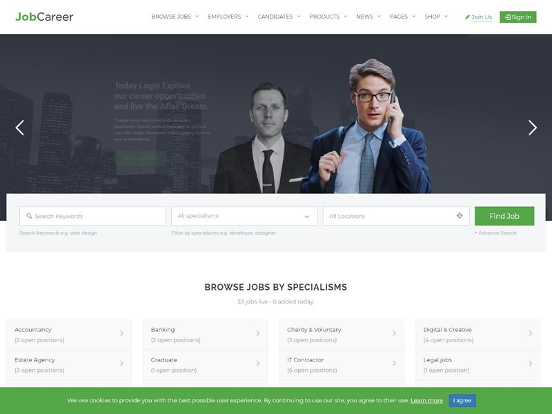 2 JobCareer Job Board Responsive