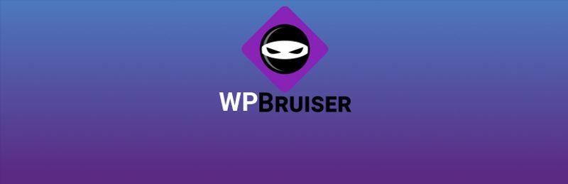 2 WPBruiser no Captcha anti